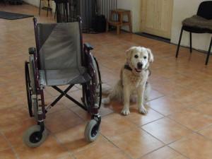 Rollstuhluebergabe 1
