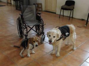 Rollstuhluebergabe 2