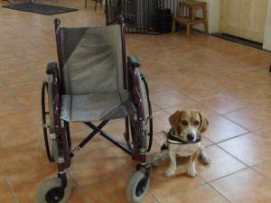 Rollstuhluebergabe 4